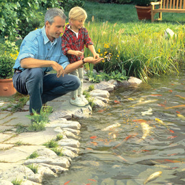 12 Steps to Get Your Pond Ready for Spring