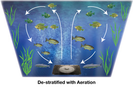 De-Stratification of Ponds