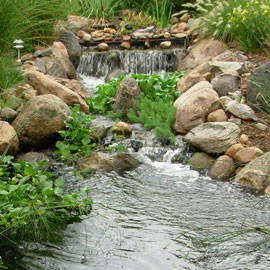 Improving Pond Water Quality